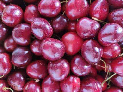 Cerezas y productos para la elaboración de liquors