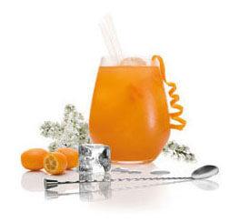 Bebida de Naranja fresca con Pacharán